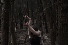 blood on her hands. (azrael cosgrove) Tags: red forest dark photography blood bush hands woods hand arms reaching pale her drip gore curled conceptual dripping azrael 2012 soaked cosgrove shutterbug97