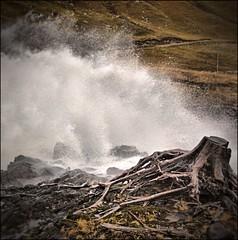Stumped (Rob Outram) Tags: tree water scotland october rocks europe force flood roots spray glen stump cascade 2012 strathfarrar