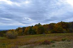 (Grace (Bingyan S)) Tags: travel autumn trees sky mountain fall nature clouds landscape virginia nationalpark nikon october outdoor foliage va shenandoah d5100