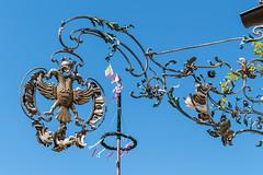 Ein Adler umkreist den Kirchweihbaum  [Explored] (fotomanni.de) Tags: bayern franken maiibaum rotweis wirtshausschild