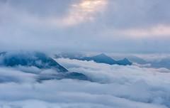 Mountains over clouds (Padmanabhan Rangarajan) Tags: munnar mountains clouds cotton fluffs sunrise kolukkumalai