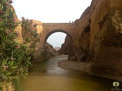 Le pont romain (Ath Salem) Tags: algrie paysage tourisme dcouverte    biskra sidi okba kantara palmeraie dattes brche montagne beaut rare porte sahara
