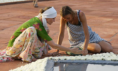 joy_at_work_5711 (Manohar_Auroville) Tags: sri aurobindo birthday auroville matrimandir urn amphitheatre decorations flowers beauty beauties girls manohar luigi fedele 15816