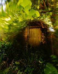 Mareado y buscando una salida (Sersio_Photographer) Tags: corua del conde fotografodecoruadelconde fotos con vaselina
