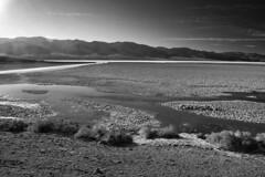 """Badwater Pilgrims"" (helmet13) Tags: d800e raw bw landscape nature deathvalleynationalpark badwater california desert saltdesert mountains scale width silence salinewater aoi heartaward peaceaward"