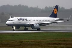 Lufthansa D-AIND, OSL ENGM Gardermoen (Inger Bjrndal Foss) Tags: daind lufthansa airbus a320 neo osl engm norway gardermoen
