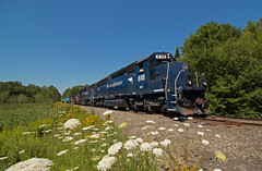 618 at the Plains Road (jc_canon) Tags: spines intermodal water train flowers queenanneslace readfieldmaine sd40 emdsd40 emd mec618 powa panamrailways panam