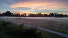 My view this morning (Harmen de Vries) Tags: pss:opd=1474478572 outdoor landscape sky lucht landschap zonsopkomst sunrise anreep schieven assen assenoost drenthe cloud wolken nevel mist ochtendnevel