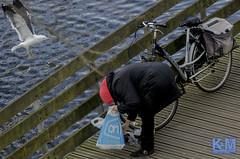 A view from the room (Erwin van Maanen) Tags: streetphotography straatfotografie urban daily dagelijks netherlands nederland paisesbajos aviewfromtheroom documentaire verhalendefotografie narrativephotography socialdocumentary erwinvanmaanen kroonenvanmaanenfotografie nikond7000