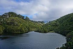 Vision of Spring (ayuwulandari) Tags: spring wellington newzealand zealandia trekking