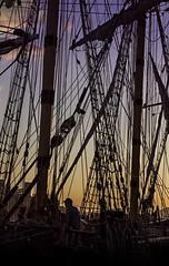 Sunset break. f8; 1/400s; ISO 400; FL50mm.  Juan Manuel Saenz de Santa Mara, 2016 (Brenus) Tags: impresiones lensblr photographers tumblr original sailboats ropes rigs sunset atardeceres