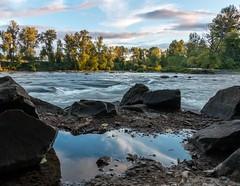 Reflection (Ryan Jeske) Tags: landscape puddle eugeneor water oregon canon70d willametteriver canon reflection canonefs1585isusm river