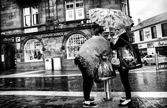 Rain Dears. (Mister G.C.) Tags: blackandwhite bw image streetshot streetphotography candid photograph monochrome urban town city women ladies females umbrella rain rainy raining talking conversation gritty eyecontact zonefocus zonefocusing snapfocus ricoh ricohgr pointshoot mistergc schwarzweiss strassenfotografie hamilton scotland britain greatbritain gb british uk unitedkingdom europe