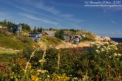 Duncan's Cove III (sminky_pinky100 (In and Out)) Tags: duncanscove novascotia canada landscape nature hikingtrail coastal scenic rugged pretty sea atlantic omot cans2s