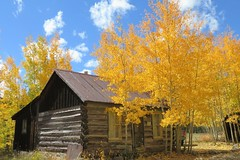 There's Still Gold to Behold in St. Elmo (Patricia Henschen) Tags: chaffeecounty sawatch range mountains mountain aspen autumn fall color gold silver mine mines mining ruins ghosttown stelmo mtprinceton chalkcreek nathrop colorado canyon sanisabelnationalforest leafpeeping fallcolor pathscaminhos county road backroad clouds