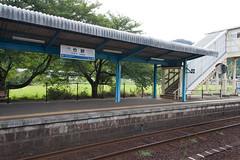 20120816-Takeno-Nekozaki-15