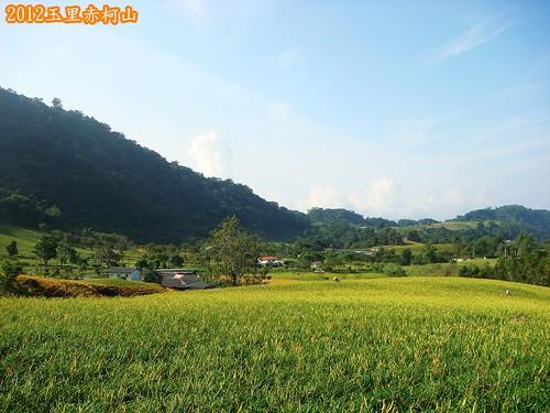 玉里赤柯山 (110).jpg