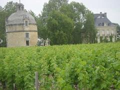 7916958978 fe2b18cbb2 m Bordeaux 2012