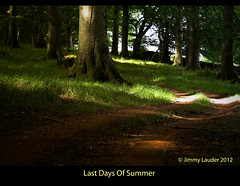 Last Days Of Summer (James L71 (Not For Profit)) Tags: road outside for office post scottish just directions borders wooplaw ask stow on at