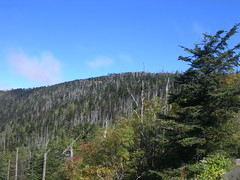 Clingman's Dome (jimmywayne) Tags: nationalpark tennessee highpoint smokymountains clingmansdome highest seviercounty