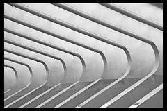 Silver curves (Susanne Schuijt) Tags: abstract station architecture blackwhite belgium belgie zwartwit railway liege luik architectuur