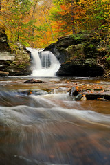 Tonic of Wilderness (Northern Straits Photo) Tags: morning autumn trees fall nature yellow landscape gold waterfall stream pennsylvania awesome eastcoast rickettsglenstatepark ireenaworthyphotography northernstraitsphotography