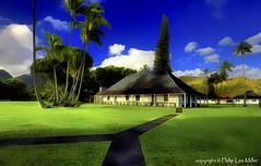 Hanalei Green (philipleemiller) Tags: nature clouds landscape hawaii palmtrees kauai paths hdr hanalei greengrass waiolihuiiachurch topazclean d7000 magicunicornverybest galleryoffantasticshots trueexcellence1