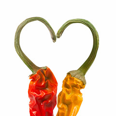 Love...Hot and Spicy (photography.andreas) Tags: red food hot macro love yellow fruit canon germany pepper deutschland photography heart minimal whitebackground simplicity spicy chilli product simple onwhite herz saarland productphotography fooddesign produktfotografie eos40d canoneos40d urweiler