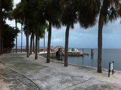 Villa Viscaya Miami (Venture Minimalists) Tags: miami villa venture vizcaya minimalists ventureminimalists