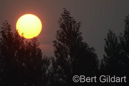 Fire&Sun