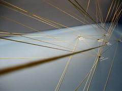 Network by Jennifer Stylls, on Flickr