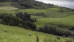 Ireland Nex7  52 (Hale Yeah) Tags: ireland dublin sony 7 falls sheen doonbeg sonynex nex7