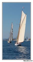 Dpart des big boat (Fabien Giordan) Tags: classic sunshine boat big nice ship yacht bateaux des regatta 23 septembre anges voilier vieux 2012 baie tuiga grment rgtae