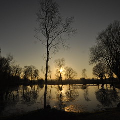 Keld Head (petefreeman75) Tags: uk trees england lake pool reflections pond allrightsreserved pellison petefreeman mygearandme mygearandmepremium mygearandmebronze infinitexposure