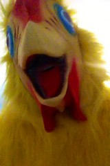 Chicken suit 61 (ChickenJay) Tags: bird chicken yellow happy zoo costume transformation mask wing beak suit talon hen birdbrain toony