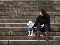 Vendo a vida passar (alnero) Tags: dog canon do museu sopaulo powershot cachorro poodle moa garota escada ipiranga panoramafotogrfico sx120is