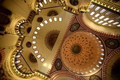 Suleymaniye Mosque 45 (David OMalley) Tags: architecture turkey interior muslim islam trkiye istanbul mosque arabic east arab dome sultan ottoman oriental middle orient cami grad mustafa madrassa sinan mehmet turkish masjid allah turk sleymaniye islamic tahir camii mihrab suleymaniye muhamed eminonu grandiose mimar atik