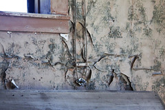 Peels Galore (lefeber) Tags: california wallpaper abandoned window wall mine peeling decay interior roadtrip wires worn ghosttown weathered bodie ruraldecay bodieclub