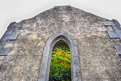 The secret garden (ItalishMagazine) Tags: ifttt 500px italishmagazine italish irlandesidentro irishinside irlanda ireland aran islands isole inishmore tree trees church