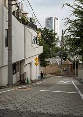 (sandman_kk) Tags: street perspective road city buildings slope tokyo japan 2016