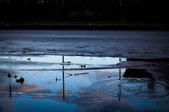 Blue Rain (Giorgini Luca) Tags: pozzanghera acqua puddle reflection riflesso