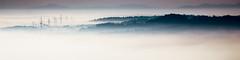 far away... (Florian Grundstein) Tags: zoom landscape naabtal mood sunrise sigma contemporary 150600 os fog foggy misty morning nebel bodennebel bavaria bayern oberpfalz upperpalatinate naab fluss nature grundstein florian teublitz mnchshofen