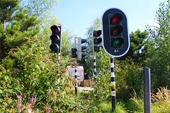 traffic jungle (smoke.rings) Tags: traffic lamps green red yellow nature outdoor