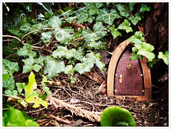 Day 244 - Here There be Faeries (Free 2 Be) Tags: fairydoor tiny project365 small photoaday dailyphoto 365 hidden postaday 116photosin2016 garnden door