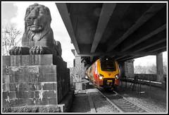 Britannia Bridge Voyager (peterdouglas1) Tags: virgintrains britanniabridge lions menaistraits northwalescoastrailway