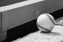 baseball (andileah) Tags: cocacolapark ironpigs baseball nikond5200 lehighvalley allentown