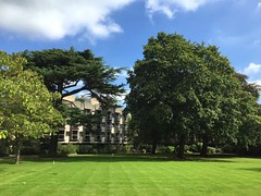 The lawn at St Anne's College (Philosopher Queen) Tags: oxford stannescollege lawn green university