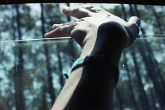 if i was free (Laetitia Farkas Aubouy) Tags: playwiththelight filmlover filmisnotdead 35mm hand freedom nikon grainisgood analog analogvibes insidecar wood nature forest window