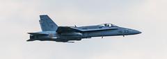 McDonnell Douglas F/A-18 Hornet-1 (wolfgangcevela) Tags: fohnsdorf steiermark sterreich at fa18hornet zeltweg airpower2016