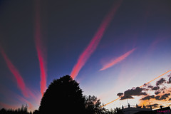 Caminos purpuras en el cielo  -  Purple roads in the sky (ricardocarmonafdez) Tags: cielo sky estelas trails azul purpura blue purple siluetas silhouettes luz light backlighting clouds nubes